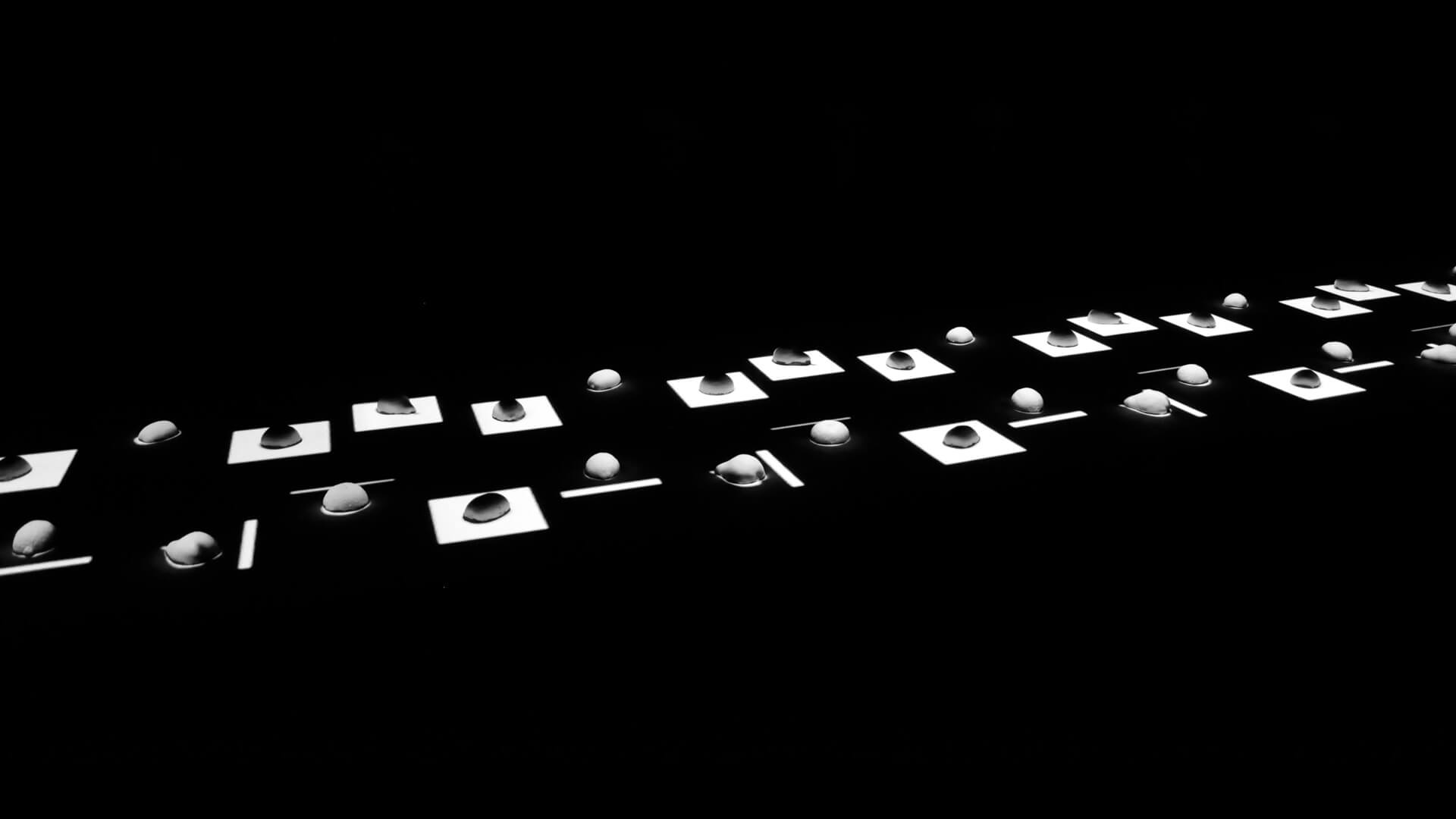empreintes_plastac-83